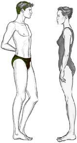 body shape balanced body