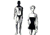 mens body shape analysis