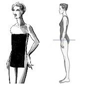 liz body proportions