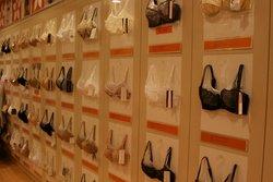 female underwear bras