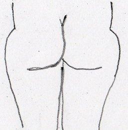 saddlebags thighs