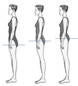vertical body shapes